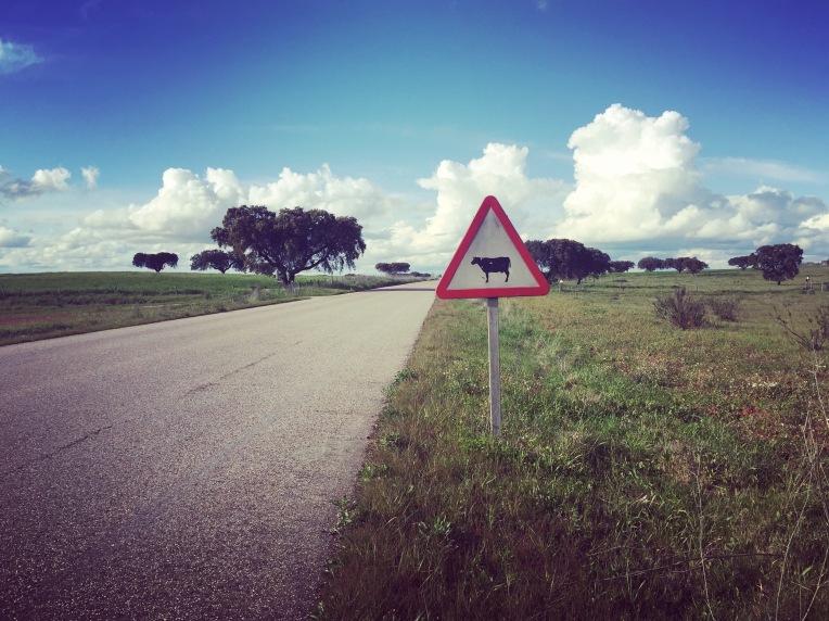 Holidays-in-Portugal-City-Break-tours-aldeia-da-luz4